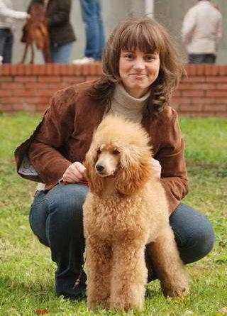 Выставка собак 2009 год в России