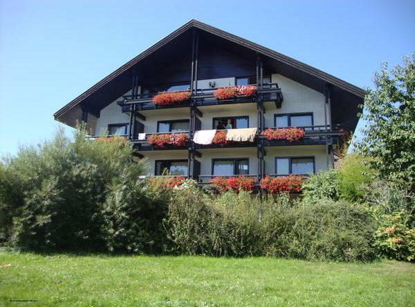 Пудели фото 19 2012-09-09 Юбилейная выставка 60 лет VDP в г. Баден-Баден Германия.