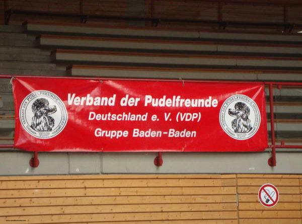 Пудели фото 31 2012-09-09 Юбилейная выставка 60 лет VDP в г. Баден-Баден Германия.